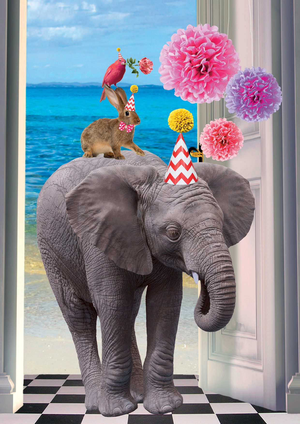 Postkarte Party Elefant 10 St