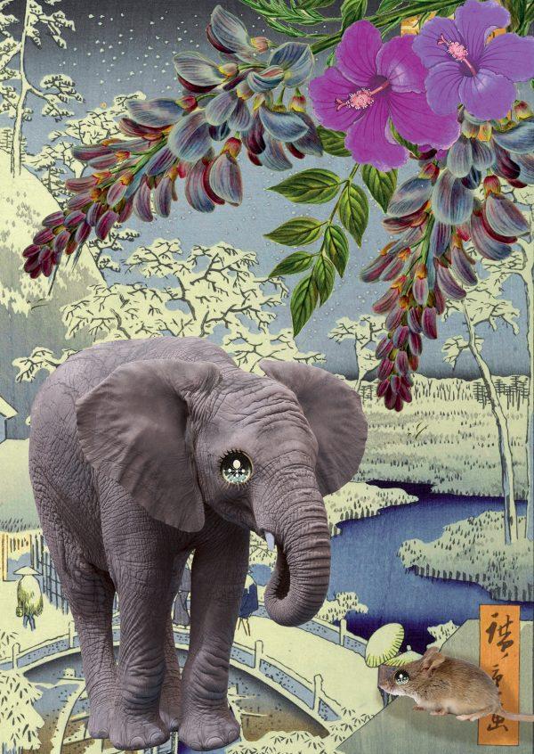 KAART ELEPHANT